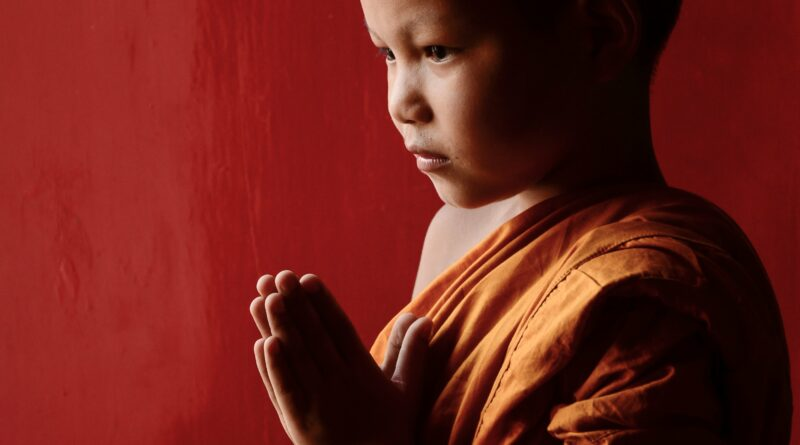novice, buddhism, monks